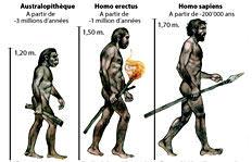 Course à pieds et évolution