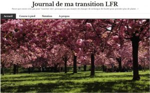 le journal de la transition de Lætitia