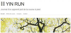Le journal de la transition de Yin Run